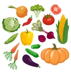 Vegetables icons set isolated on white background vector