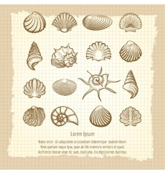 Vintage notebook page with sea shells vector image vector image