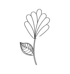 flower decoration natural sketch vector image vector image