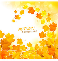 Autumn leaf fall background vector image
