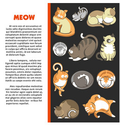 Cats cartoon characters ginger and grey kittens vector