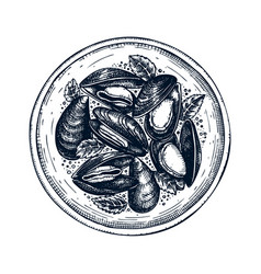 cooked mussels with herbs on plate shellfish and vector image