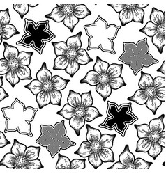 graphic cumin pattern vector image