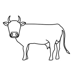 Indian brown cow vector