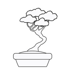 Pot bonsai tree natural plant decoration outline vector
