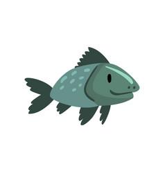 prehistoric fish biology evolution stage gradual vector image