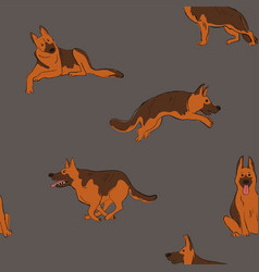 seamless pattern with shepherd dog vector image