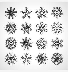 set of sixteen snowflakes vector image