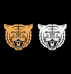 set tiger faces vintage design roaring vector image