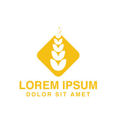 wheat agriculture logo designs inspiration vector image