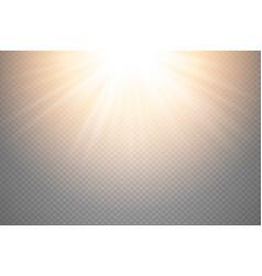 golden glowing light burst explosion on vector image