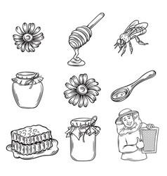 hand drawn honey icons set vector image