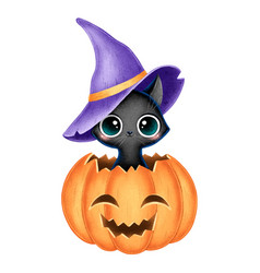 a cute cartoon black witch cat with wizar hat vector image