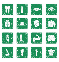 Body parts icons set grunge vector