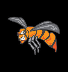 cartoon fly isolated on black background vector image