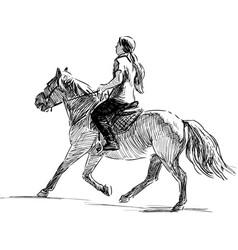 Girl riding a horse vector
