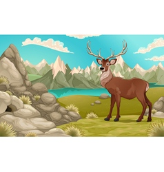 Mountain landscape with deer vector image