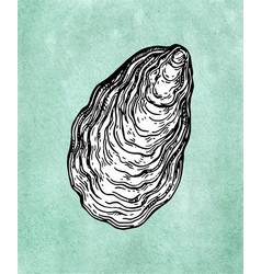 Oyster shell ink sketch vector