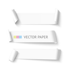 Set of horizontal blank white curved paper ribbon vector image vector image