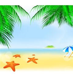 summer palm beach vector image