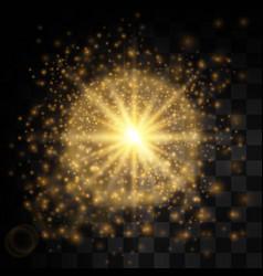Transparent glow light effect star burst with vector