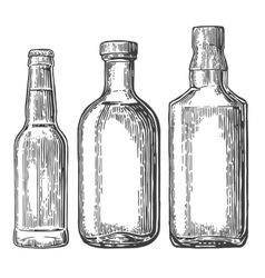 Set bottle for beer whiskey tequila vector image vector image