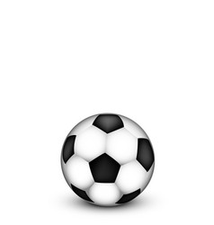 soccer ball on a white background vector image vector image
