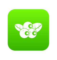 blueberries icon digital green vector image