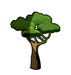 Cartoon african tree natural image shadow vector