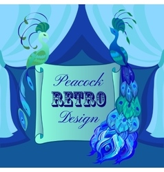 Couple peacocks scroll card with text blue and vector
