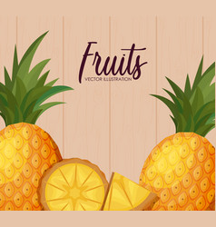Fresh pineapples fruits with sliced vector