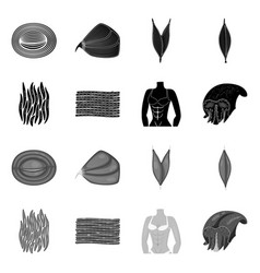 Isolated object fiber and muscular icon vector