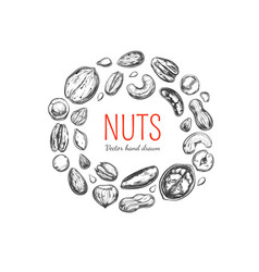 Nuts and seeds frame vector