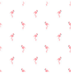 pattern with pink flamingo exotic bird vector image