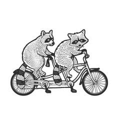 Raccoons ride tandem bike sketch vector