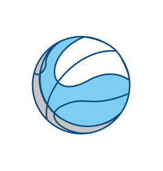 sport basketball ball vector image