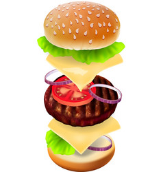 Hamburger - the view of every ingredient vector image