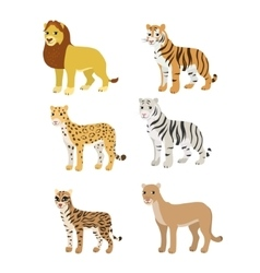 Cartoon set lion tiger leopard white tiger puma vector