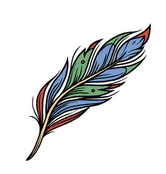 colorful feather vintage concept vector image