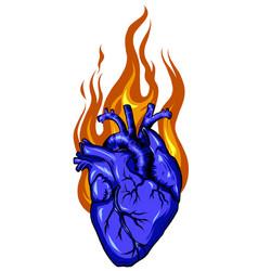 fire love logo designs concept heart logo vector image