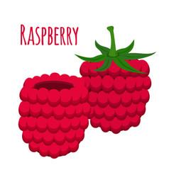 Fresh berries sweet raspberryflat vegetarian foo vector