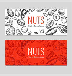 Nuts and seeds banners vector