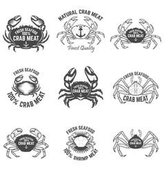 Set crab meat labels fresh seafood design vector