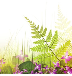 Summer meadow with viola flowers vector
