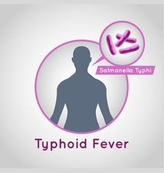 typhoid fever logo icon design vector image