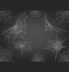 black spiders and different web clipart vector image