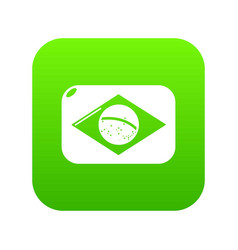 brazilian flag icon green vector image