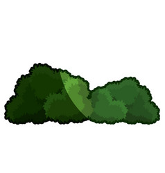 cartoon bushes natural ecology plant shadow vector image