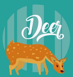 deer cute animal cartoon vector image