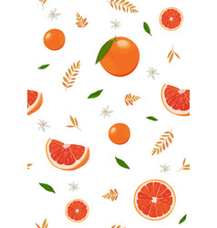 orange fruits and slice seamless pattern vector image